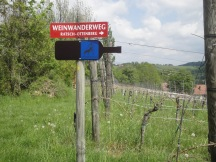 Weinwanderweg Südsteiermark Wegweiser