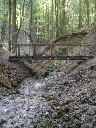 Brücke in der Altenbachklamm