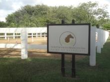 Pferdereitanlage im Hotel Maritim