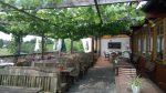 Terrasse im Weinlaubenstil