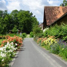 Schlosspark Pöllau (3)